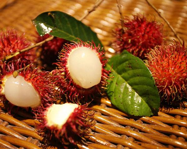 宁波热带水果配送