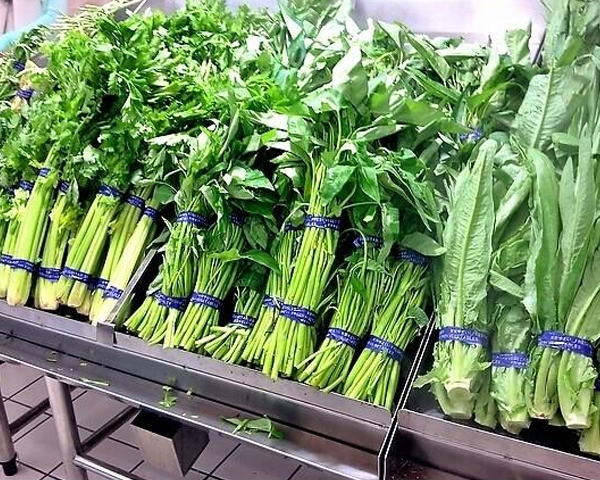 蔬菜配送公司