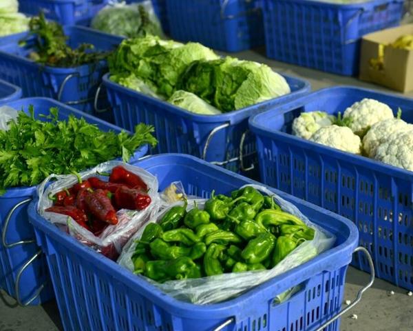 蔬菜配送中心