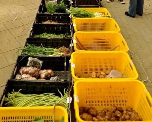 餐厅蔬菜配送
